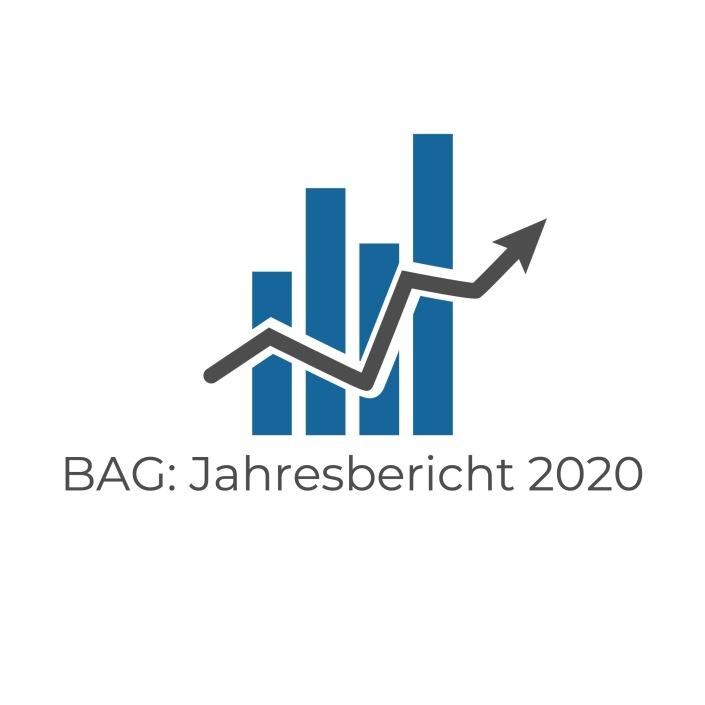 Jahresbericht BAG 2020